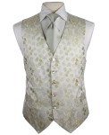 Waistcoat Single Breasted- New Look Collection